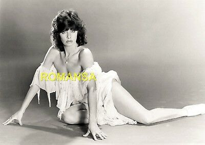 Vicki Michelle 10 X 8 Photograph + Free 6 X 4 Pocket Book Size Photograph R2459