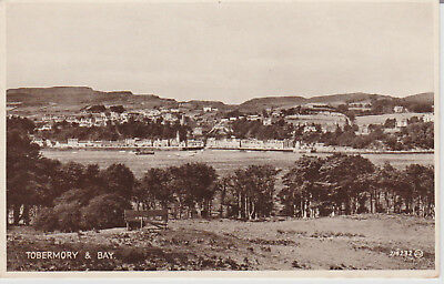 Scotland - Tobermory & Bay - Postcard  # 17167