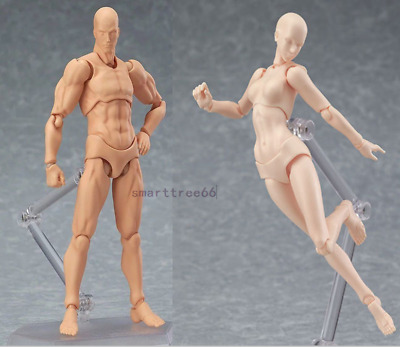 S.H.Figuarts Figma CHAN & KUN Male Female PVC Movable Figure Body Model Toy Hold