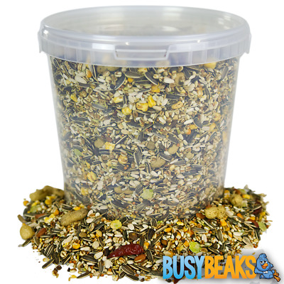 BusyBeaks African Grey Parrot Food - High Energy Bird Nut Seed Oat Feed Tub Mix