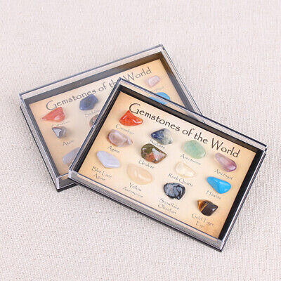 Kids Science Kit - Rock and Mineral Collection in Collection Box, Pack of 15