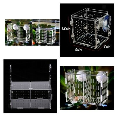 Pro Aquarium Fish Tank Guppy Double Breeding Breeder Rearing Trap Box Hatchery