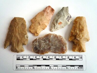 Native American Arrowheads found in Texas x 5, dating from approx 1000BC  (2278)