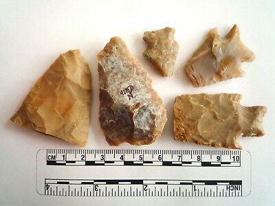 Native American Arrowheads found in Texas x 5, dating from approx 1000BC  (2259)