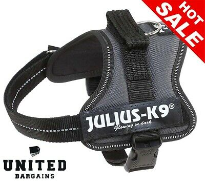 Julius-K9 162ANT-M K9 PowerHarness for Dogs, Size Mini, Anthracite