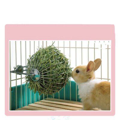 Sphere Feed Dispenser Hanging Ball Toy Guinea Pig Hamster Rabbit Pet Supply