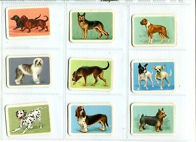 9 x Tuckfields Popular Dogs Trading Cards - Brown Backs (Lot 2a)