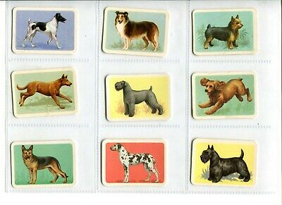 9 x Tuckfields Popular Dogs Trading Cards - Brown Backs (Lot 3a)