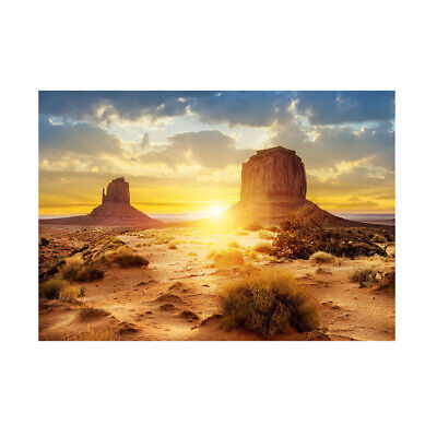 3D HD Photo-Background Aquarium Decoration Fish Tank Poster,61x30cm, Desert