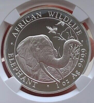 SALE2018 Somalia Silver NGC MS69 ER Elephant 100 Shillings Coin African Wildlife