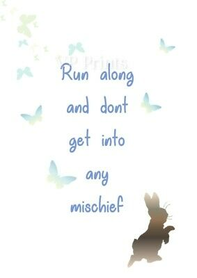 peter rabbit card run along and don/'t get into mischief birthday 115x170mm