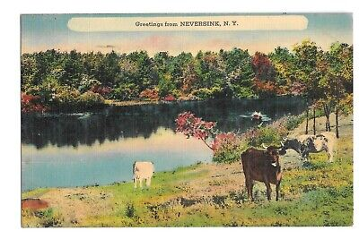 Vintage Postcard Greetings from Neversink, NY PM 1941 Linen Era