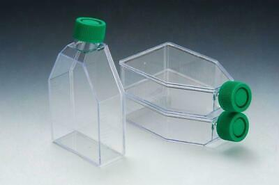 SPL Cell Culture Treated Flask with Plugged Cap,PS, Sterile Growth Area 75 cm2,