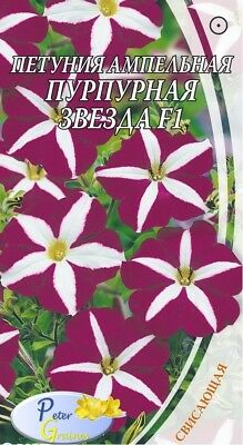 seeds Petunia falling L'star purple F1 - Petunia× hybrida - 10 Seeds
