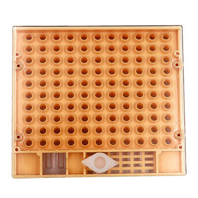 Bee Queen Rearing System Rearing Box Case 50 Brown Cell Cup Kit Beekeeping G1C4