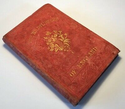 The Wild Flowers Of England, First Series, 1859 Antique, Illustrated Rare Book