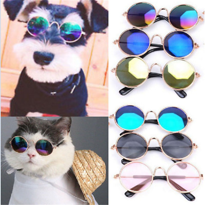 Cute Dog Cat Glasses For Pet Little Dog Eye-wear Puppy Sunglasses Photos Props