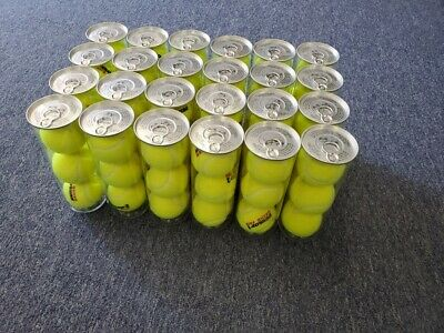Dunlop Grand Prix Hard Court Clear Can 3 Ball Cans 24 Can Case (72 Balls)
