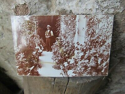 turn of last century postcard depicting a gent standing in his villa
