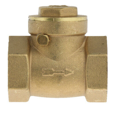 DN20 One Way Swing Check Valve, Female Thread, Brass Material -3/4 inch