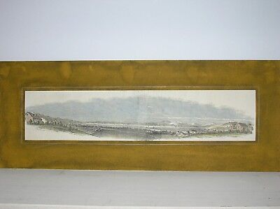 New Zealand: Panorama of Port Nicholson  /Wood-engraving
