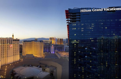 Elara Hilton Grand Vacations Club One Bedroom Grand Suite Las Vegas CES 1/2020