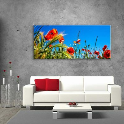 Wall Art Glass Picture Unique Home Decor Gift Poppies Flowers Nature 125x50cm