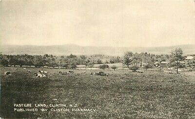 A View Of Pasture Land, Clinton, New Jersey NJ