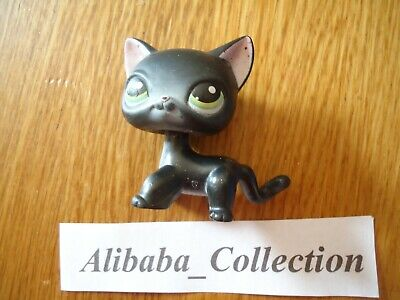 ** # Chat Cat Européen noir 336 Shorthair * LPS LITTLEST PETSHOP PET SHOP HASBRO