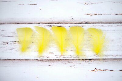 Small Bright Yellow Goose Feathers