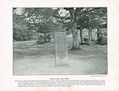 Rufus Stone New Forest Hampshire Antique Old Picture Print c1896 PEAW#35