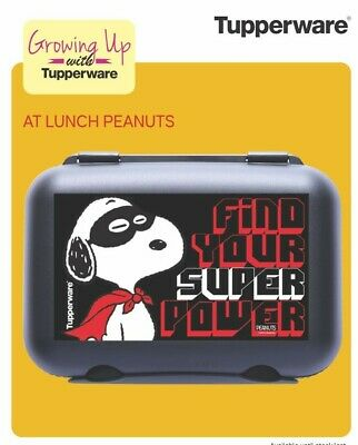 Tupperware Lunch Box With Cartoon Characters For Kids (Air & Water Tight)