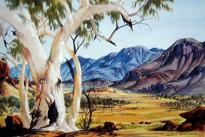 Canvas Prints  Albert Namatjira's Painting -   Framed & Ready to Hang