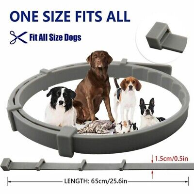 For Small Middle Large Dog Cat Flea And Tick Collar Pet Anti Bug Health 6 Month