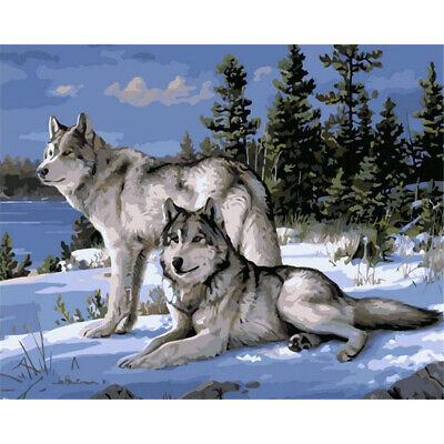 New Home Decor Canvas Paint By Numbers Kit Oil Painting DIY Lover Wolf No Frame