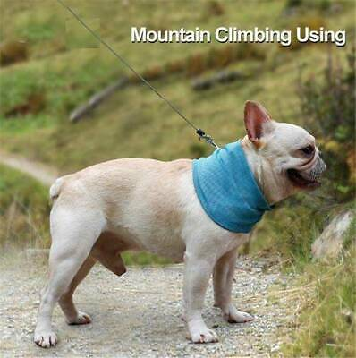 Dog Cooling Bandana Pet Chill Ice Scarf Summer Collar For Dog Cat Gift - S/M/L