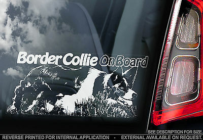 English Border Collie - Car Window Sticker - Scottish Sheep Dog Sheepdog - TYP2