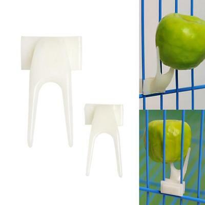 Pet Parrot Fruit Fork Birds Food Holder Feeder Device Pin Clip Budgie-Canary