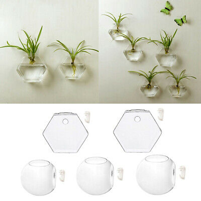 5Type Wall Hanging Glass Hydroponic Flowers Planter Vase Terrarium Container