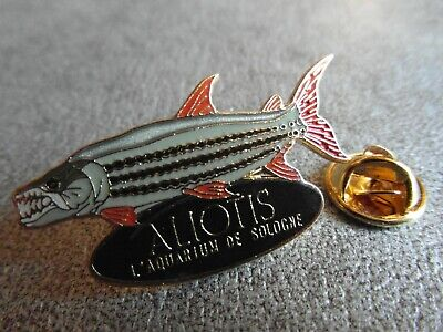 RARE PINS PIN'S - ALIOTIS - AQUARIUM DE SOLOGNE - POISSON - Signé COLLECT° *EF*