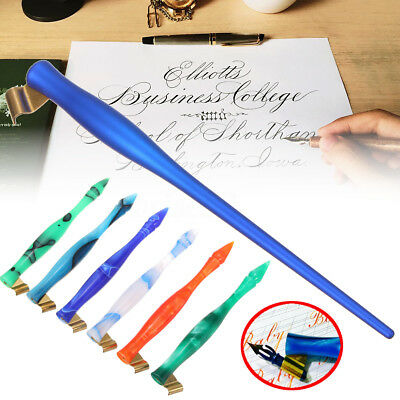 2 Function Colorful Copperplate Oblique Calligraphy English Dip Pen Nib  New