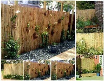 Natural Peeled Reed Fence Privacy Screen Wall Garden Decoration Outdoor 4m Roll