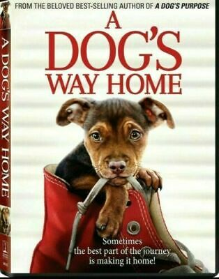 A Dog's Way Home (DVD, 2019) *FREE SHIPPING