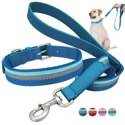 Reflective Webbing Dog Collar & Leash Leather Handle for Small Medium Large Dogs