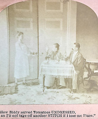 """Antique Stereoscopic Card """"How Biddy Served Tomatos Undressed"""" Stereoview Photo"""