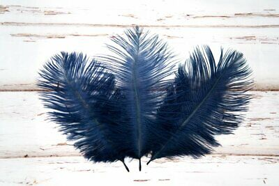 Small Navy Blue Fluffy Ostrich Feathers