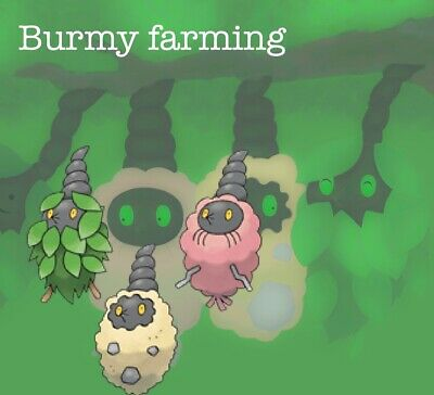 Pokemon Go: Burmy Catching  - Lots of 8 units