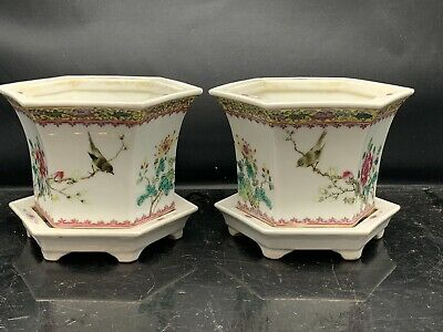 Pair Antique Chinese Porcelain Families Rose Plant Pot And Stand 19/20th Century