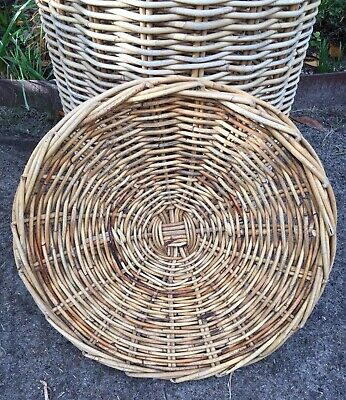 Large Wicker Cane Basket With Lid, Succulents.