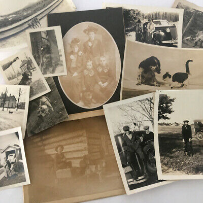Lot of 14 Vintage Cute DOG PHOTOS & Antique Cabinet Cards c1880s-1940s